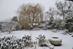With all this cold weather and snow it's easy to overlook your garden at this time of year. See our blog on how you can enhance your garden for next year!