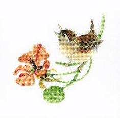 Heritage Crafts Counted Cross Stitch Kit - Solos By Valerie Pfeiffer - Simply Wren - 14 Ct Aida(vpsw Cross Stitch Bird, Cute Cross Stitch, Cross Stitch Animals, Counted Cross Stitch Kits, Cross Stitch Charts, Cross Stitch Designs, Cross Stitching, Cross Stitch Embroidery, Cross Stitch Patterns