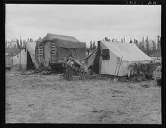 In one of the largest pea camps in California. February, 1936. Photographer: Dorothea Lange.