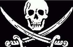 """Ahoy matey, and welcome to Pirate Asset Protection™! Me old captain always used to say, """"There are two types of asset protection: physical protection and legal protection."""""""