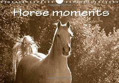 Photo Calendar, Horse Head, Equestrian, South Africa, Royalty Free Stock Photos, Van, Horses, In This Moment, Landscape