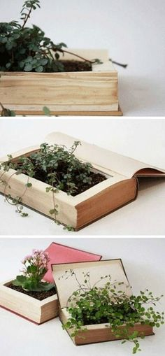 schöne zimmerpflanzen bilder buch blumentopf You are in the right place about Diy Interior Design be Book Crafts, Diy Crafts, Upcycled Crafts, Fleurs Diy, Ideias Diy, Diy Garden, Garden Art, Balcony Garden, Herb Garden