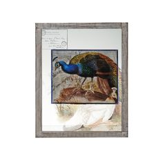 Bombay 20x16-inch Blue Peacock Plaque Wall Decor