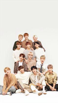 Super ideas for wall paper kpop lightstick Wonwoo, Seungkwan, Seventeen Album, Carat Seventeen, Seventeen Going Seventeen, K Pop, Seventeen Scoups, Jeonghan Seventeen, Nct
