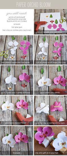 orchidee di carta fai da te da mettere su un pacco regalo o nei capelli! Basta stampare il foglio in pdf che trovate a questo indirizzo! Per quella rosa: http://www.ellinee.com/blog/wp-content/uploads/2012/08/PinkPaperOrchid.pdf. Per quella bianca: http://www.ellinee.com/blog/wp-content/uploads/2012/08/WhitePaperOrchid.pdf
