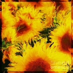 Title  A Dream Of Sunflowers   Artist  Elizabeth McTaggart   Medium  Digital Art - Fractal Art And Digital Collage
