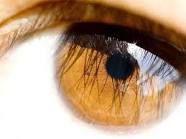 lindos olhos castanhos - Pesquisa Google