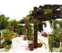 #ClippedOnIssuu de Plantas, Flores Jardins Decoração