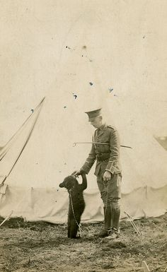 """Winnipeg the Bear, the inspiration for """"Winnie the Pooh"""", is seen here with Lt. Harry Colebourn when she was the unofficial mascot of a Canadian cavalry regiment in 1914."""