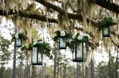 Wedding Decor yes i want lights and moss and mason jars with flowers and maybe ribbons hanging from a tree!!