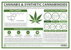 The Chemistry of Cannabis & Synthetic Cannabinoids – Compound Interest Chemistry Lessons, Science Chemistry, Organic Chemistry, Teaching Chemistry, Clinical Chemistry, Biological Chemistry, Drug Design, Chemistry Classroom, Teaching