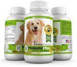 Probiotics For Dogs