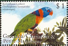 Grenada 2000-Trichoglossus rubritorquis