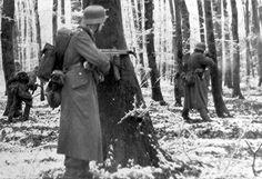 16 Décembre 1944 a vu le début de l'allemand «Offensive des Ardennes '--- la« Bataille des Ardennes ». Ce devait être la plus grande bataille rangée aux États-Unis »dans l'histoire, impliquant 600.000 troupes américaines.