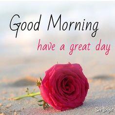 Good Morning... Good Morning Happy Sunday, Good Morning My Friend, Good Morning Texts, Good Morning Photos, Good Morning Flowers, Good Morning Messages, Good Morning Good Night, Morning Pictures, Morning Wish
