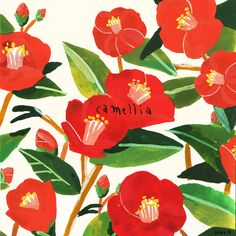 camellia on Behance Botanical Illustration, Illustration Art, Marimekko Wallpaper, Graphic Wallpaper, Bohemian Art, Botanical Flowers, Small Art, Camellia, Pictures To Draw