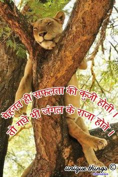 31 Best Hindi Quotes Images Hindi Qoutes Manager Quotes Quotations