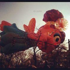 Wishing You A Happy Thanksgiving!  #holiday #thanksgiving #macysparade #nyc #centralpark #floats #abbycadabby {past parade}