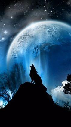 Imagenes De Lobos Aullando A La Luna Llena Buscar Con Google