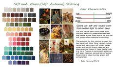 Soft Autumn - Color Harmony -