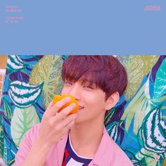 Joshua 'You Make My Day' official photo Set The Sun ver. Woozi, Wonwoo, Jeonghan, Joshua Seventeen, Seventeen Album, Hip Hop, Chris Brown, Vernon, Instrumental