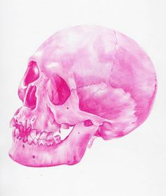 Pink skull drawn with a pink ballpoint pen by Paul Alexander Thornton. http://www.facebook.com/PaulAlexThornton