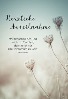 mit Spruch Condolences, Grief, Inspiration, Sorrow Quotes, Comforting Words, Biblical Inspiration, Sadness, Inhalation
