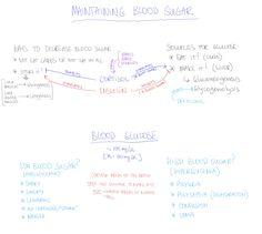 Maintaining Blood Sugar. Hypoglycemia. Hyperglycemia. Ways to Decrease Blood Sugar. Insulin. Blood Glucose.