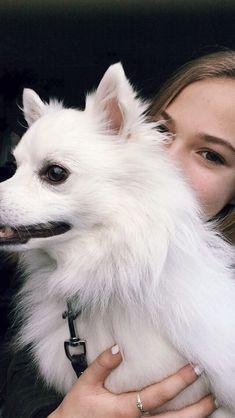 Dit is mijn hond, hij heet balou. Hij is voor mij wel belangrijk. Als ik hard loop gaat hij mee of soms lopen we gewoon stukken
