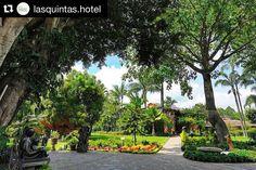 #Repost @lasquintas.hotel  Imagínate despertar entre la naturaleza & desayunar así... Te gusta la idea? #ViveCuerna ::link en bio:: #hotel #banquetes #jardin #travel #mexico #cuerna #jardines #naturaleza #bodas #instagood #yum #foodie #celebrate #deco #jardin #cuernavaca #eventos #evento #mexico #eventos #foodstagram #instalike #brides #amor #viaje #hoteles by lasquintas.restaurante