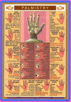 Predictions Depending On Palm Reading - Benefits and Performance-Hand readers attempt to interpret simple and easy distinct lines on the palms via their extrasensory capabilities, and next utilize such details to evaluate a person's inner and forecast his/her future life, which comprises health, wealth, money, future relationships, career, yet others. Read More: http://www.horoscopeyearly.com/predictions-depending-on-palm-reading/