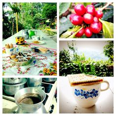 Fairtrade coffee break during World Fairtrade Day on the finca 'el Gaucho' in Colombia
