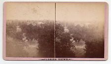 Orange City Florida Stereoview By MM & WH Gardner of Atlanta Georgia #3
