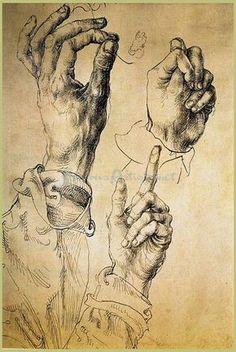 Study Of Three Hands  by Albrecht Durer -