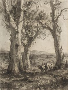 110 Best Sir Hans Heysen German Born Australian Artist