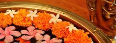 """""""Gesundheit ist nicht nur die Abwesenheit von Krankheit, sondern der dynamische Ausdruck des Lebens."""" Sri Sri     mehr über Sri Sri Ayurveda: http://www.artofliving.org/de-de/art-living-und-ayurveda"""