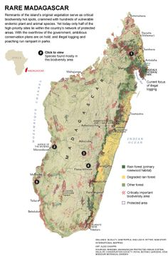 National Geographic map of Madagascar
