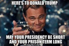 Funniest Trump Transition Memes: Here's to Donald Trump