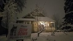 It's snowing in Olympia! It's Snowing, Stupid Funny, Olympia, Yard, Cabin, Signs, House Styles, Home Decor, Homemade Home Decor