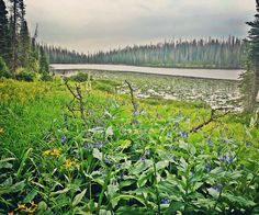 Lake Percy, Steamboat Springs, Buffalo Pass, Trail #1102, Mnt Zirkel Wilderness