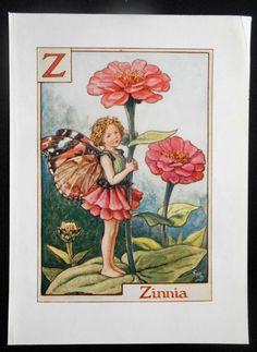 Zinnia alfabet Letter Z Flower Fairy Vintage Print, c.1940 Cicely Mary Barker-boekillustratie plaat