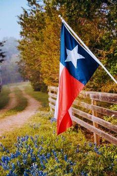 Visit Texas, Only In Texas, Texas Pride, Texas Usa, Austin Texas, Republic Of Texas, Texas Photography, Texas Forever, Loving Texas