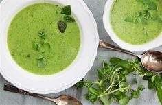 Dietní a velmi zdravá - to je polévka z potočnice | na serveru Lidovky.cz | aktuální zprávy