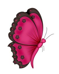 butterfly2_bc_pink.png