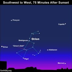 As dusk gives way to darkness, use Orion's Belt to locate  Sirius, the brightest star in the nighttime sky, plus the star Aldebaran and the planet Mercury.