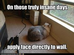 On those truly insane day - apply face directly to wall.