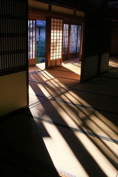 Lights and shadows in japanese style