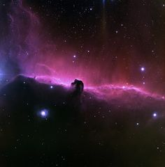 Beautiful Horsehead Nebula-- This exceptional image of the Horsehead nebula was taken at the National Science Foundations 0.9-meter telescope on Kitt Peak with the NOAO Mosaic CCD camera