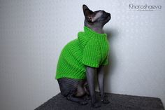 Hand Knitted Sphynx Jumper Green Apple, Soft Tank Top For Cat Clothes, Warm Cat Sweater For Gift Love Sphynx Or Small Dog, Cat Clothing Cat Lover Gifts, Pet Gifts, Diy Stuffed Animals, Dinosaur Stuffed Animal, Cat Coasters, Cat Tent, Cat Hacks, Unique Cats, Cat Sweaters