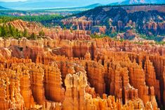 Inspiration Point, Bryce Canyon National Park, Utah – Famous Last Words Bryce Canyon, Wilderness, Utah, National Parks, Canvas Art, Hiking, Explore, Adventure, Amazing